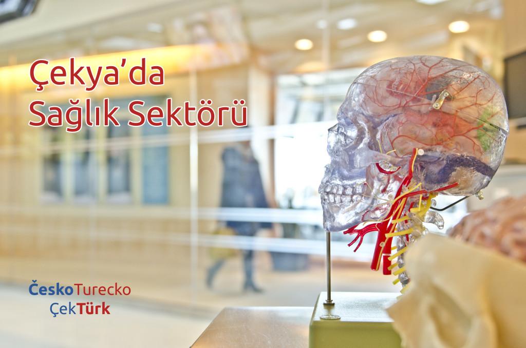 Çek Cumhuriyeti'nde Sağlık Sektörü